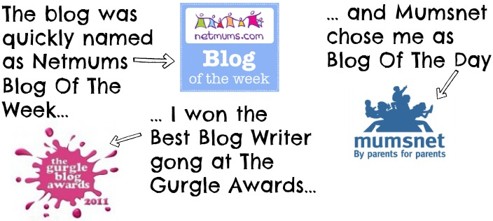 Information on award winning blogger, Alison Perry