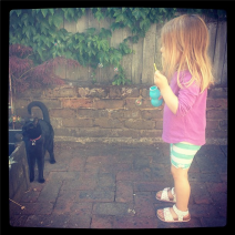 Child blowing bubbles at a cat