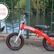 Boomer 2 in 1 Balance Bikes? A Stroke Of Genius