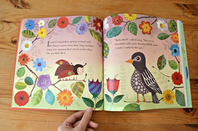 Lucy Ladybird book